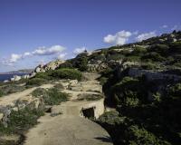 Reportage Costa Nord Sardegna Batteria di Talmone Foto n. Y3A9584