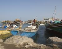 Barche di pescatori al porto di Al Hodeidah Yemen / Foto n. 0029