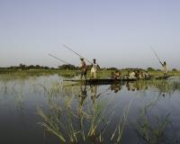 Pinassa in navigazione a Djenne / Foto n. 0366