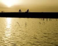 Biciclette al Tramonto a Djenne / Foto n. 0397