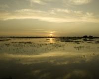Pinassa in navigazione a Djenne / Foto n. 0411