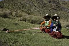 Perù Natura e vita 2012