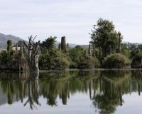 Sagar sito archeologico sulle sponde del Lago Inle Foto n. AOK8339
