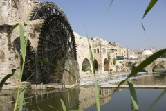 Siria 2008 Hama Maskaneh Homs